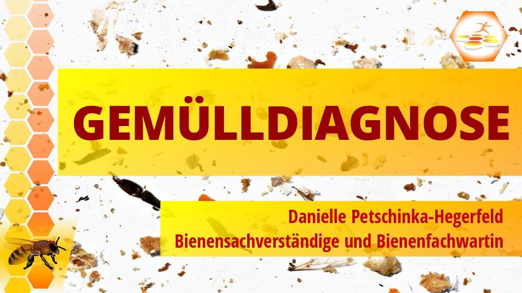 Ankündigung: Vortrag Gemülldiagnose beim IV Schnaittach - 13.11.2019